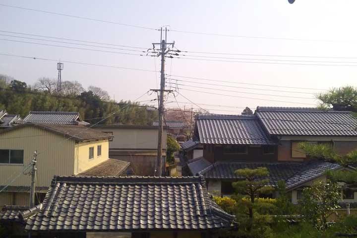 家との家の間に見える桜の木