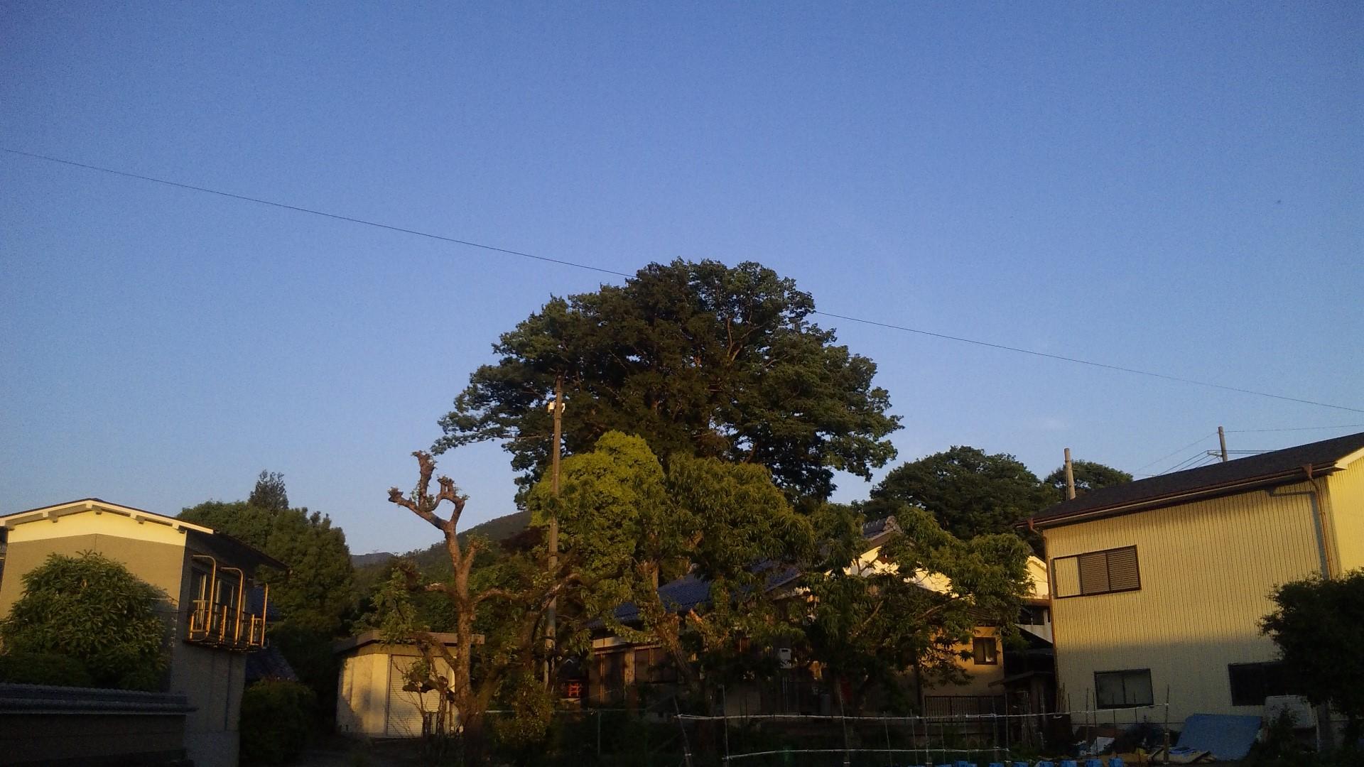 5月の夕方の空